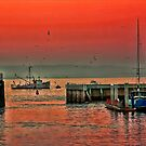 Twighlight in Monterey by Ann J. Sagel