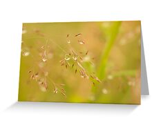 Delicate Droplets Greeting Card