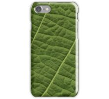 Structure Tilia Leaf iPhone Case/Skin