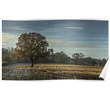 A frosty autumn morning Poster