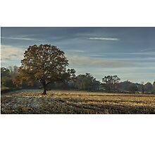 A frosty autumn morning Photographic Print