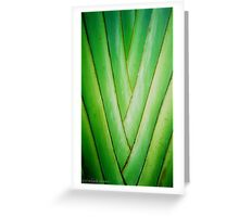 Jamaica Palm Weave Greeting Card
