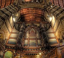 St Paul's Cathedral • Melbourne by William Bullimore