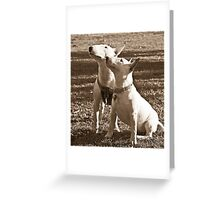 Mitchell and Maddie Greeting Card