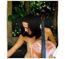 Behind the Cello Blinds Poster