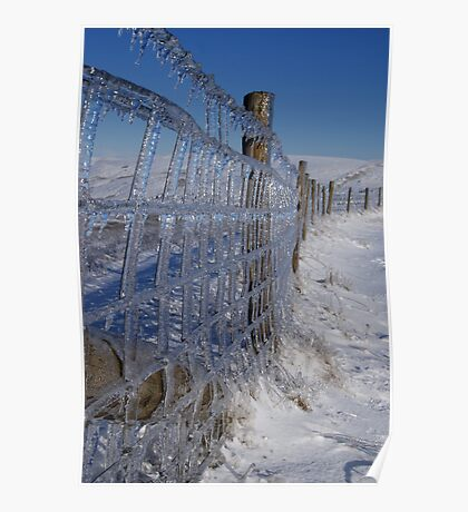 Icey Fence Poster