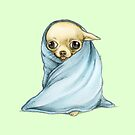 Chihuahua Wrapped in a Blanket by Katie Corrigan
