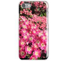 Crimson Cloud Hawthorne iPhone Case/Skin