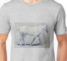 Black Shadow-Connemara Stallion Unisex T-Shirt