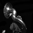 Sousaphone by Kurt  Tutschek