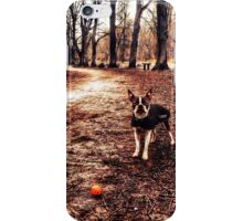 Untitled Meryl iPhone Case/Skin