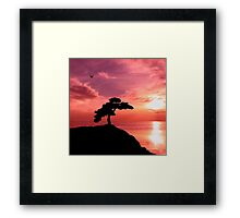 Lucid Bonsai Framed Print