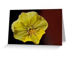 yellow pansy Greeting Card