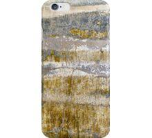 Bayou Dreaming iPhone Case/Skin