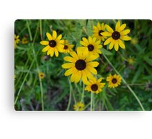 More Yellow Flowers Canvas Print