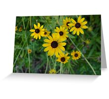 More Yellow Flowers Greeting Card
