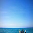 Calm Waters by NEmens