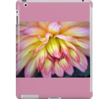 A Soft Touch! iPad Case/Skin