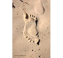 Pushmepullme on the sand © Vicki Ferrari Photographic Print