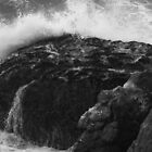 Crashing Wave, Hidden Bird by SheppardPhoto
