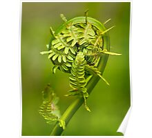 Furled Poster
