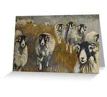 Stomping Swaledales Greeting Card