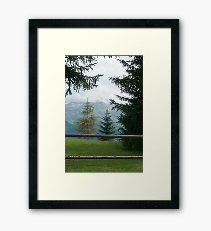 a gate Framed Print