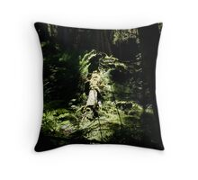 spotlighted Throw Pillow