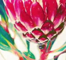 Vintage Protea Sticker