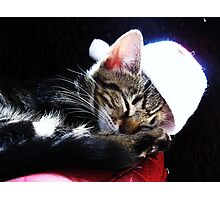 We wish you a Xmas Kitty Photographic Print