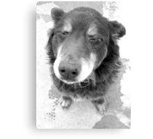 Snoopy? Canvas Print