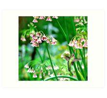 Hummingbird Happiness...is Nectar Art Print
