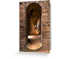 Step into the past Greeting Card