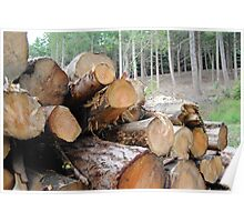 Piles of Logs Poster