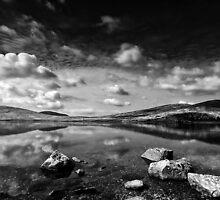 Dam Thing by Alan McMorris