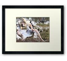look before leaping Framed Print