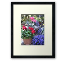 Radiant Color! Framed Print