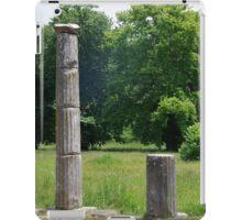 Ancient Columns iPad Case/Skin