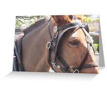 Worked like a Horse. Greeting Card