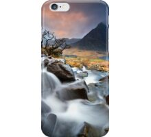 Tree and Tryfan iPhone Case/Skin