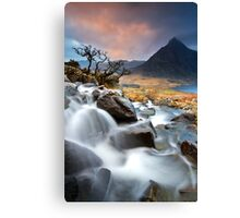 Tree and Tryfan Canvas Print
