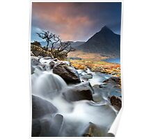 Tree and Tryfan Poster