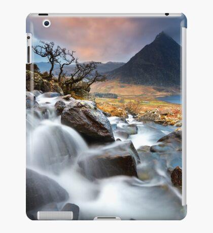 Tree and Tryfan iPad Case/Skin