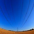 Pylon by Nigel Bangert