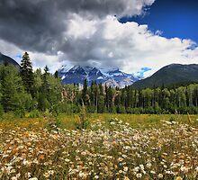 Mount Robson, BC, Canada by Teresa Zieba