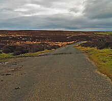 Moorland Road and Dallow Gill by WatscapePhoto
