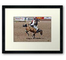Bareback 1 Pikes Peak or Bust rodeo Framed Print