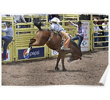Bareback 3 Pikes Peak or Bust Rodeo Poster