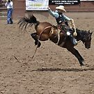 Saddle Bronc 2 Pikes Peak or Bust Rodeo by hedgie6