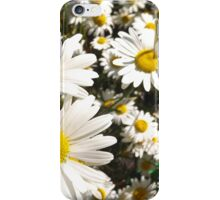 Daisy iPhone & Samsung Phone Case iPhone Case/Skin